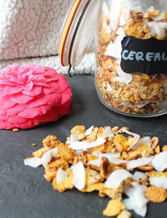Granolas cacahuètes et coco